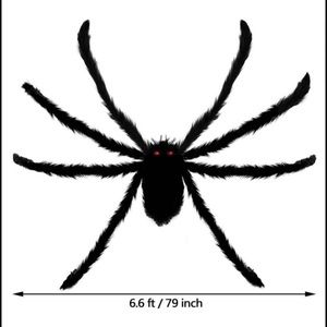 Giant 6.5 foot spider